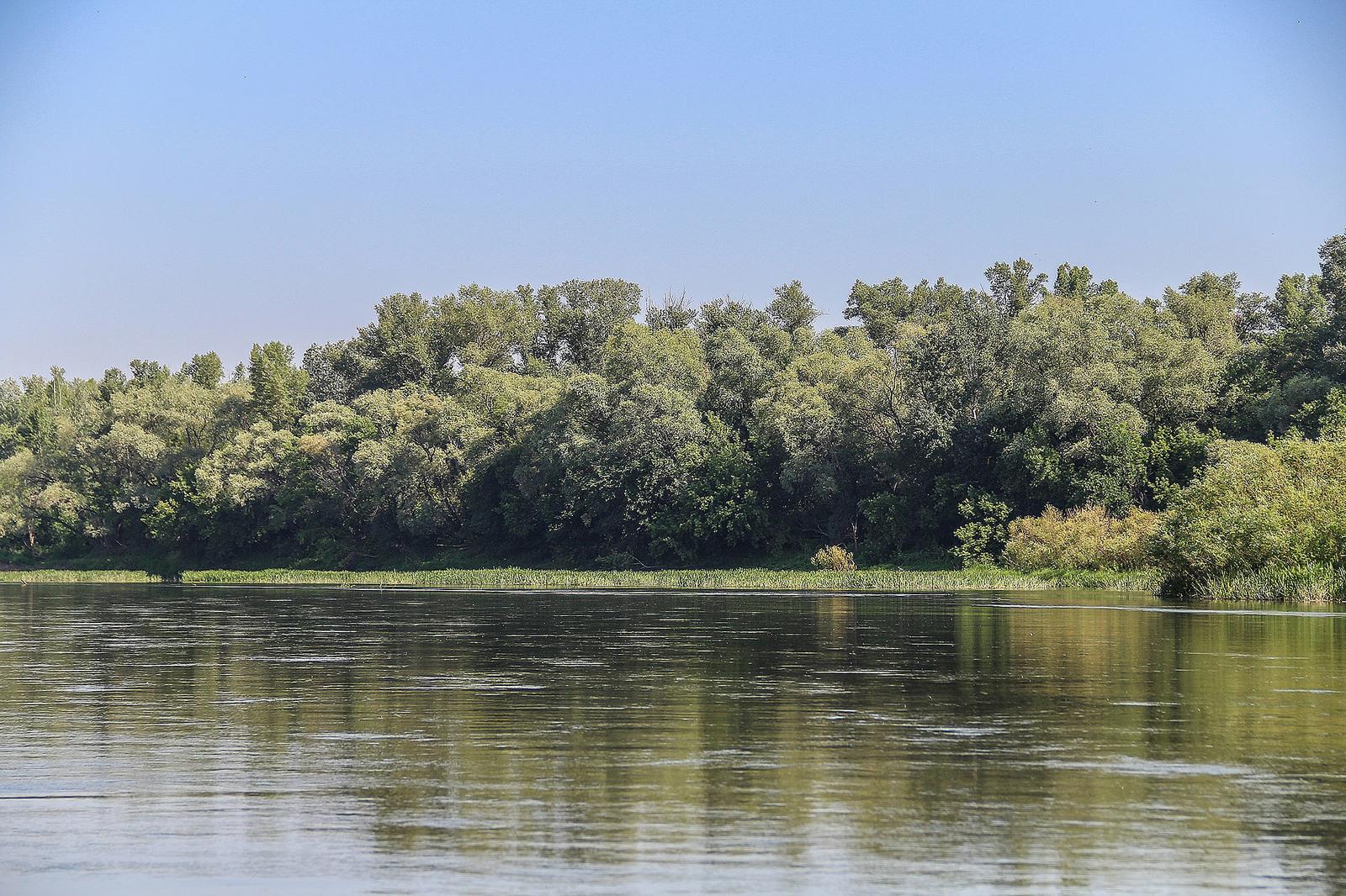 Сенаторы предложили разработать международную программу по спасению реки Урал