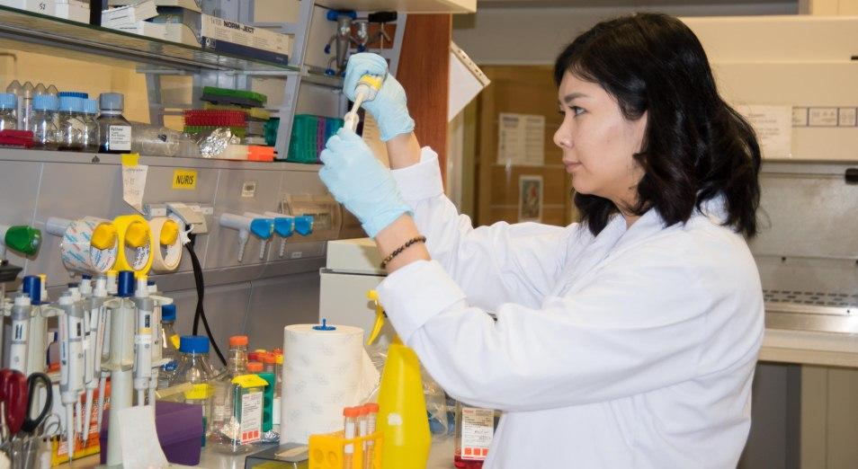 Казахстанских ученых поддержит Всемирный банк