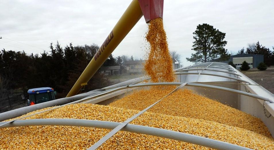 АПК: за четыре года экспорт сельхозпродукции из РК в Китай вырос в два раза
