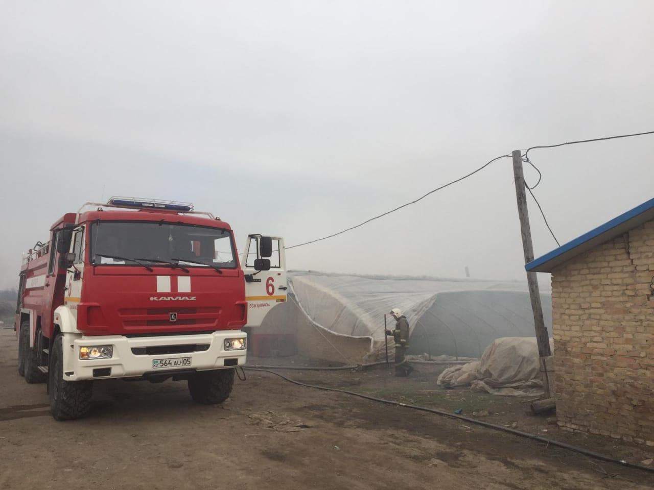В Алматинской области сгорели три теплицы площадью 1920 квадратных метров