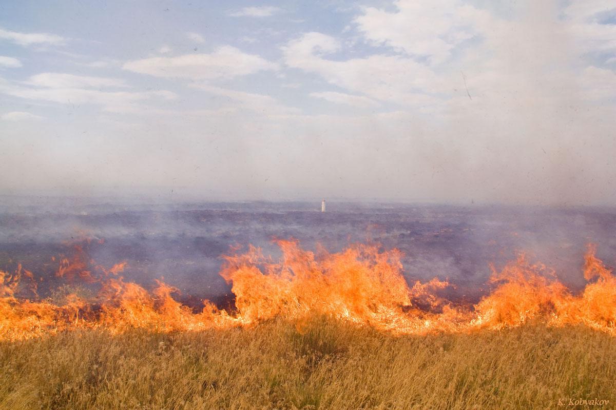 В Казахстане зарегистрировали рекордное количество пожаров, Казахстан, Рекорд, пожар