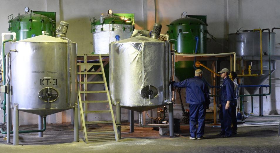 Китай может удвоить импорт подсолнечного масла из Казахстана, Масло, Подсолнечное масло, экспорт, Завод, Масличные культуры