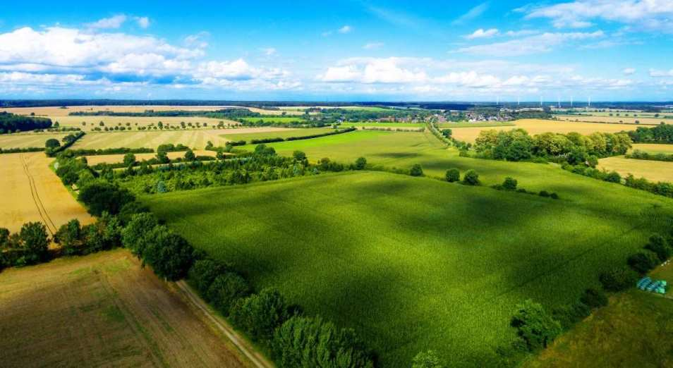 Ужесточить спрос за земли намерены в Казахстане