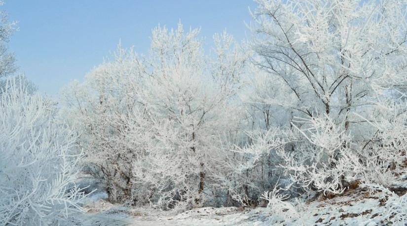 Морозная погода сохранится в ближайшие дни в Казахстане