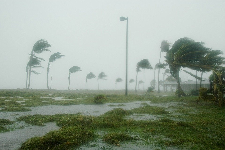 Нефть дорожает в ожидании урагана «Флоренс»