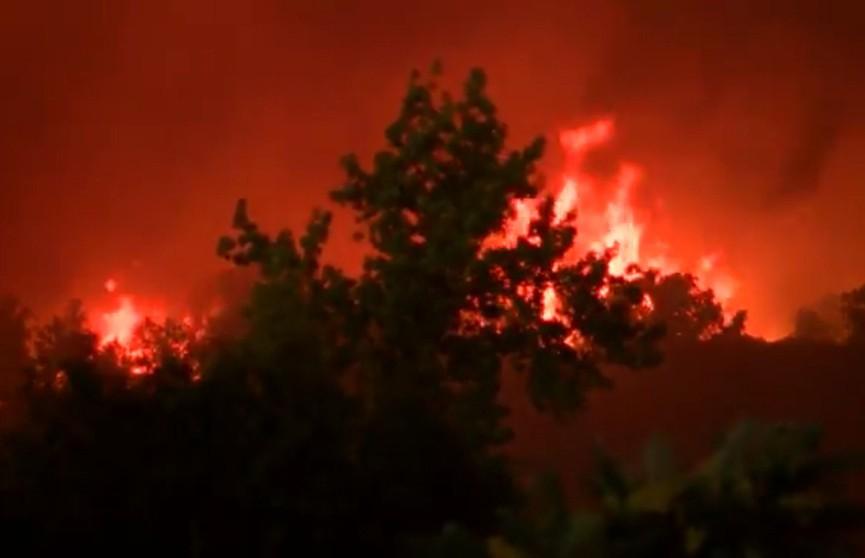 В США лесные пожары унесли жизни 25 человек