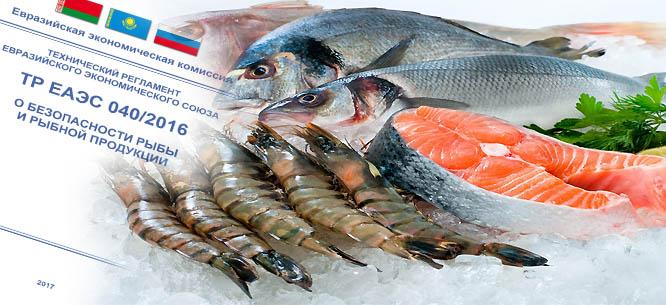 ЕЭК выработает рекомендации о порядке оборота продовольственных товаров на территории Евразийского Союза