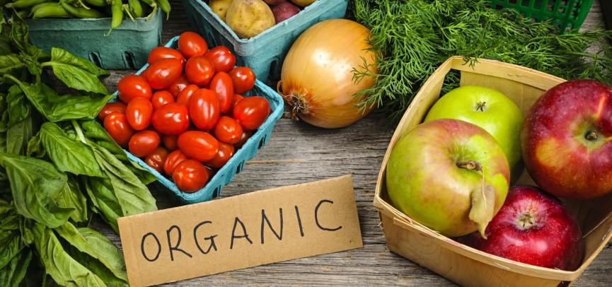 Казахстанские производители обсудили экспорт органических продуктов в Киеве , Органические продукты, Казахстанский производитель, Organic Foods