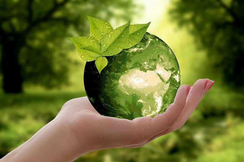 Объявлен конкурс фотографий и рисунков в рамках молодежного экологического марафона «МОЙ ЭКО-СЛЕД»