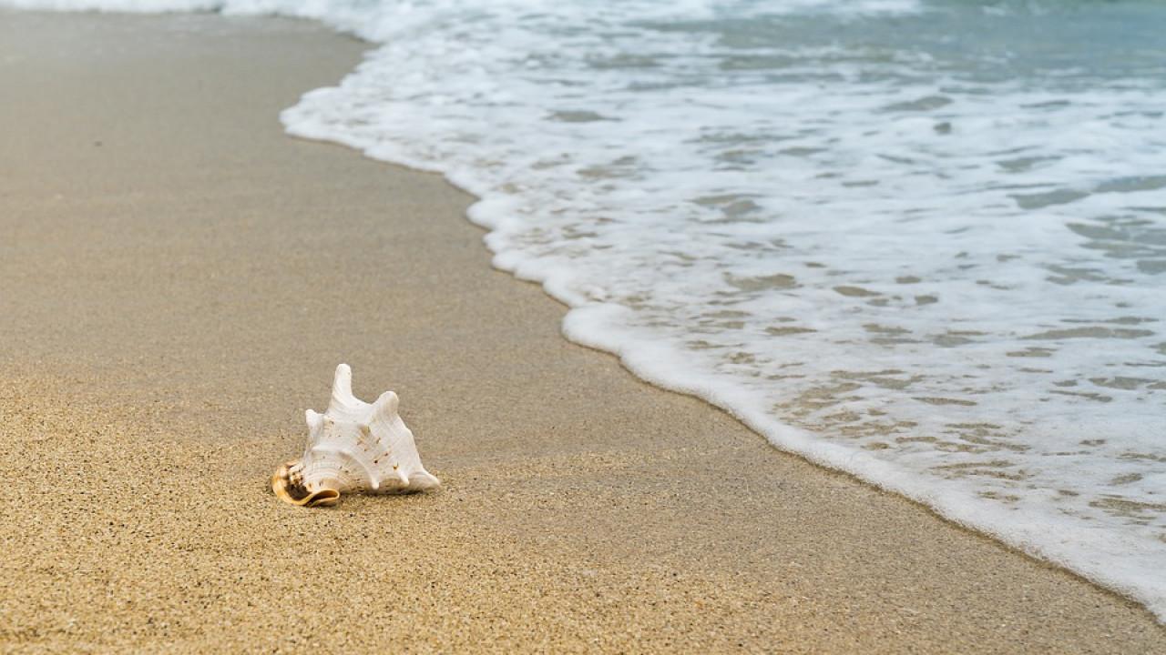 Карантин не для всех: частные пляжи продолжают работать