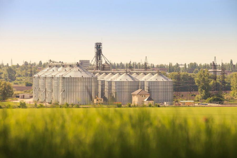 На ETS реализовано более 9000 тонн пшеницы