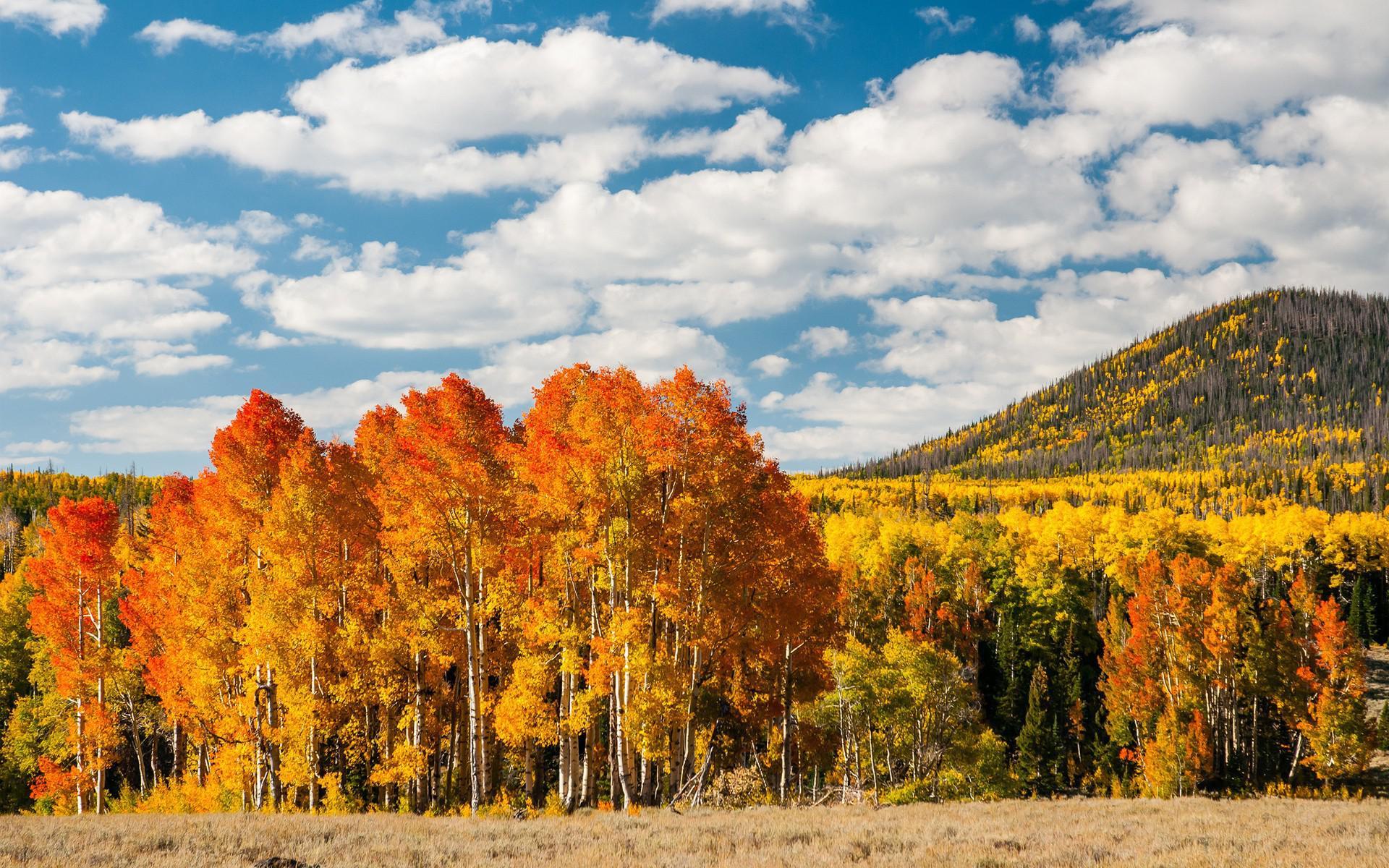 Осень в Казахстане: какая погода ожидается на этих выходных