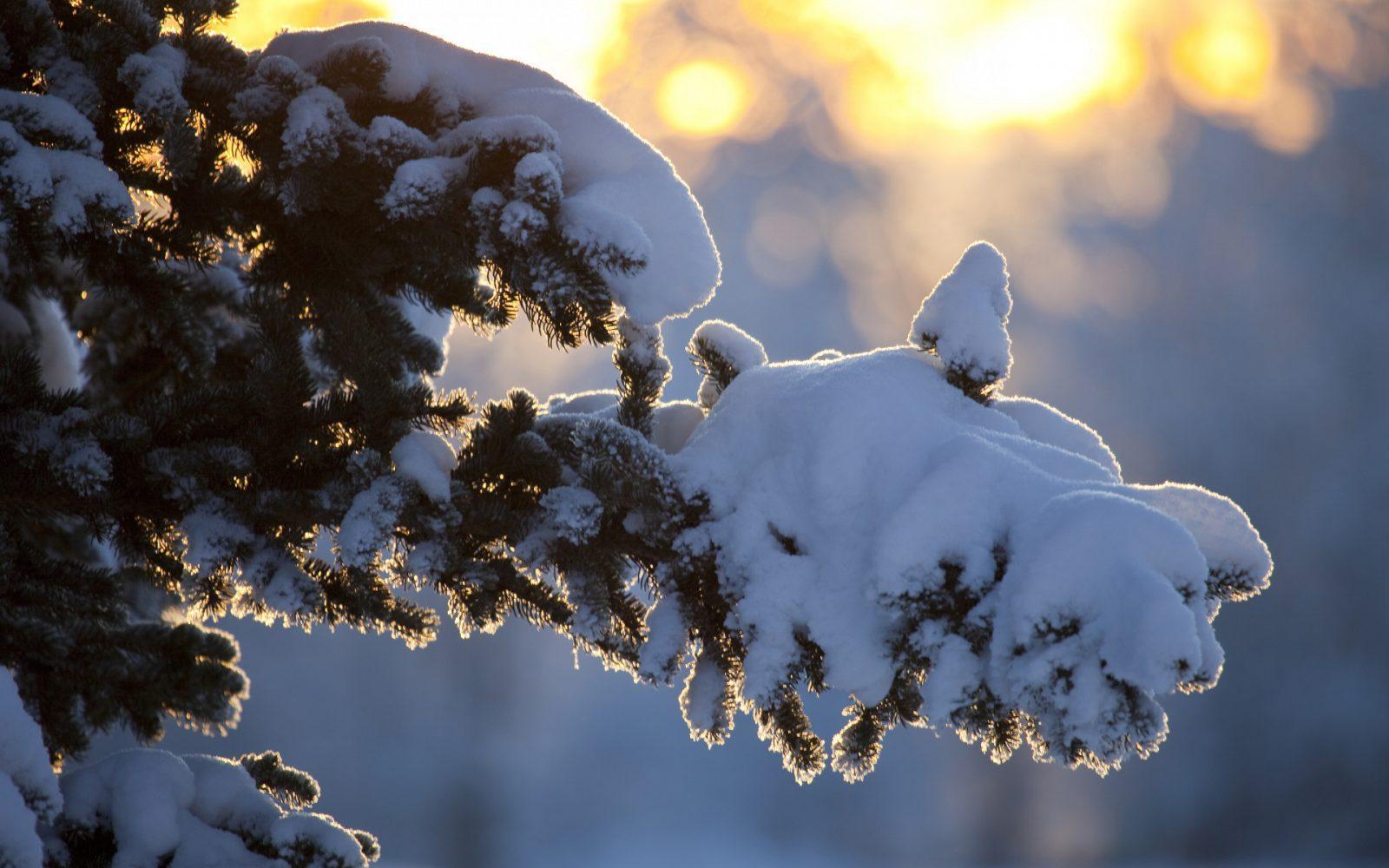 Погода в Казахстане: синоптики обещают сильный мороз