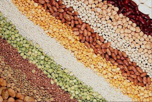 Продкорпорация откроет финансирование аграриям на приобретение семян у НАНОЦ