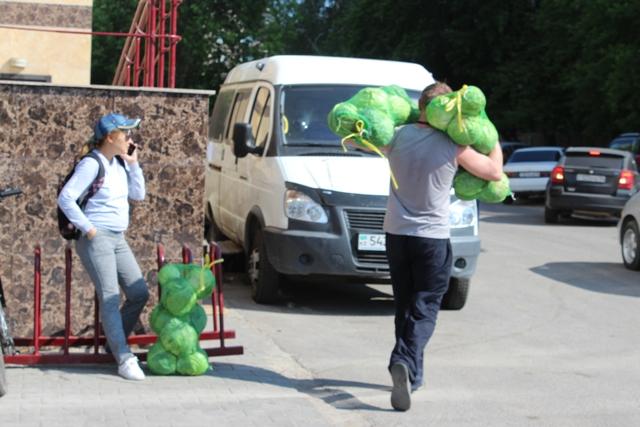 10 тонн капусты из Туркестанской области раздали волонтерам в Павлодаре