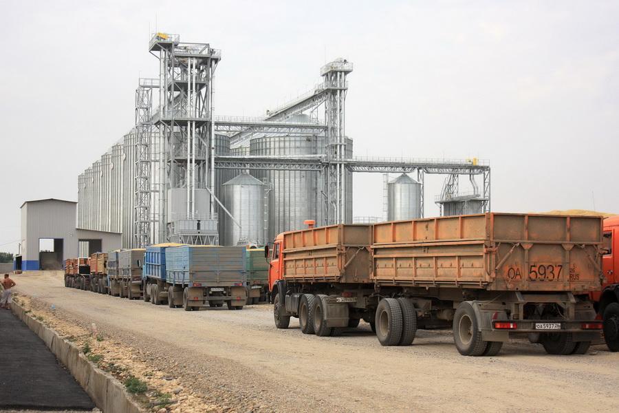 Самые высокие резервы зерна – в Акмолинской области