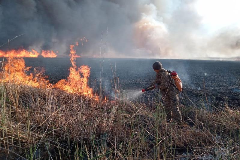 Неделю тушат пожар в природном резервате «Алтын дала» в Костанайской области
