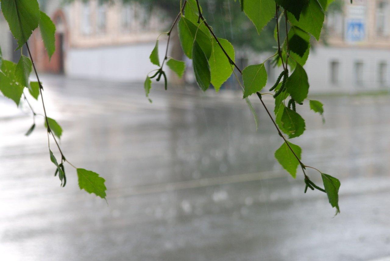 Какая погода ждет казахстанцев сегодня
