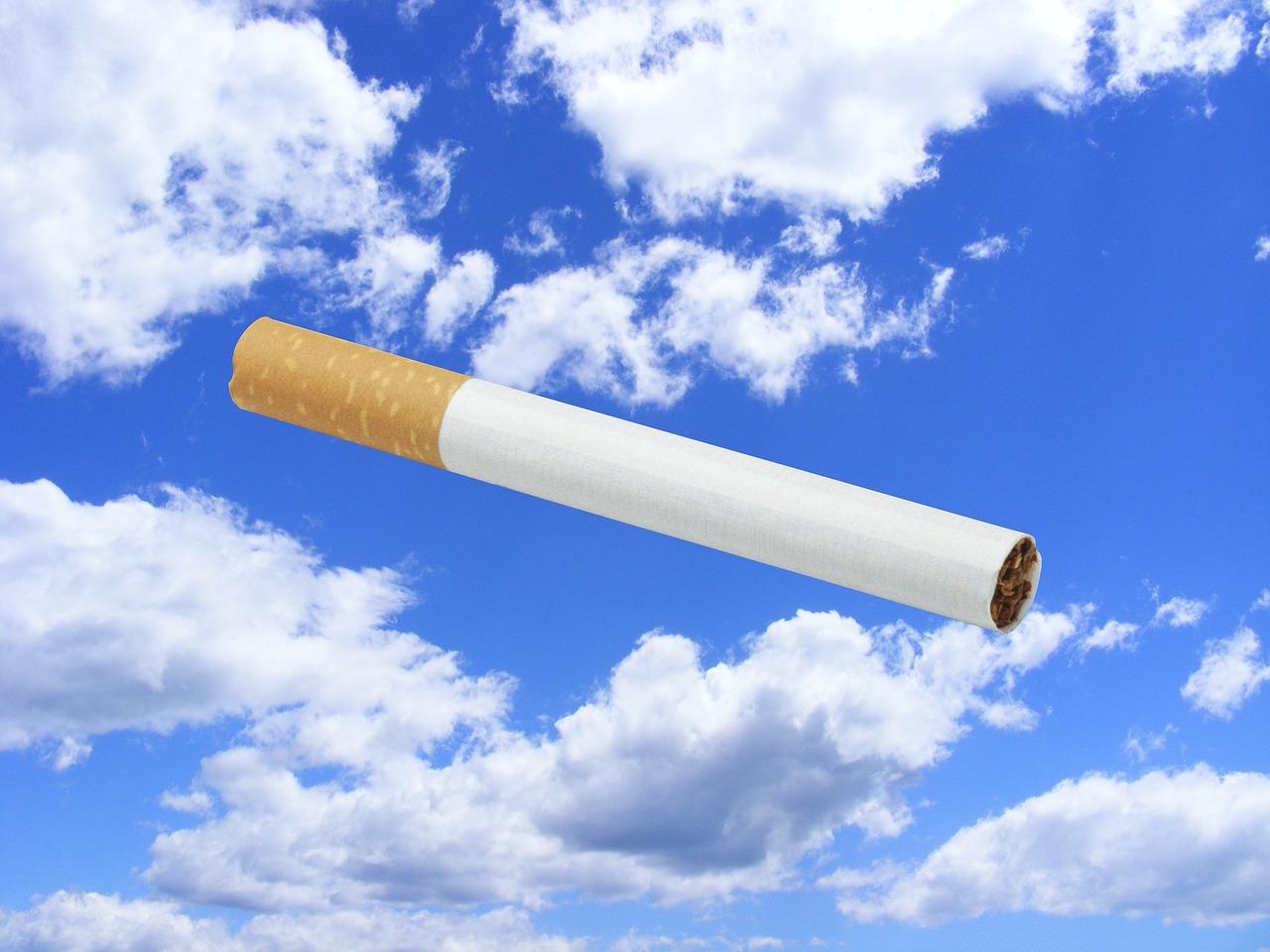 30 контейнеров сигарет пытались ввезти контрабандой из Ирана