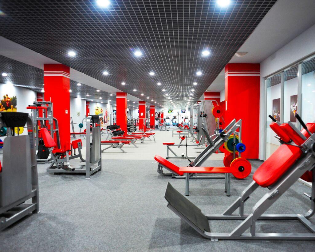 Где и как жители столицы могут заниматься физкультурой и спортом?