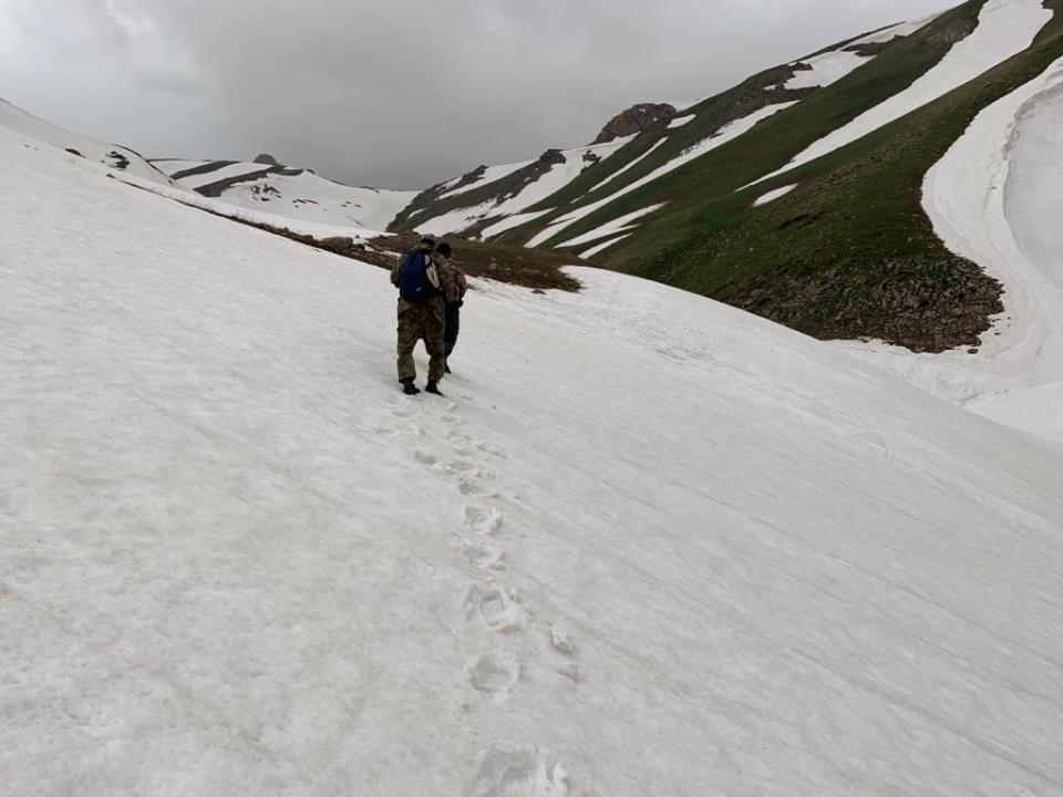 В горах Туркестанской области третьи сутки ищут семерых отдыхающих
