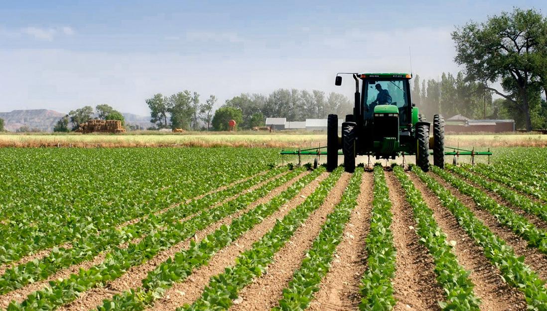 Парламент принял законопроект об условиях аренды сельхозземли для казахстанцев