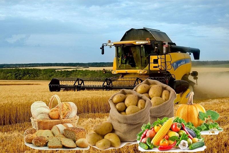 Более 500 тонн продукции реализуют производители Павлодарской области на ярмарке в Нур-Султане