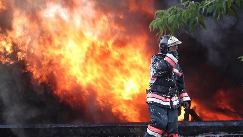 Пожар в Павлодаре затронул Баянаульский национальный парк