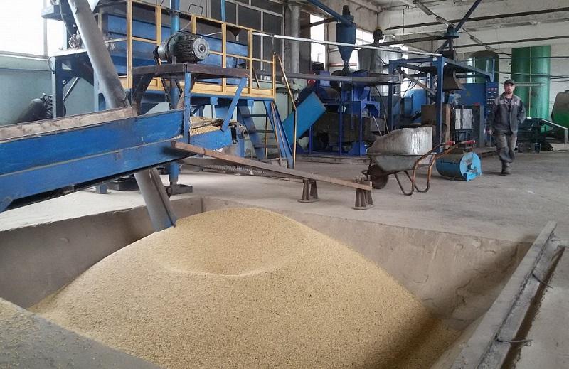 В Алматинской области планируют запустить завод по производству соевого масла