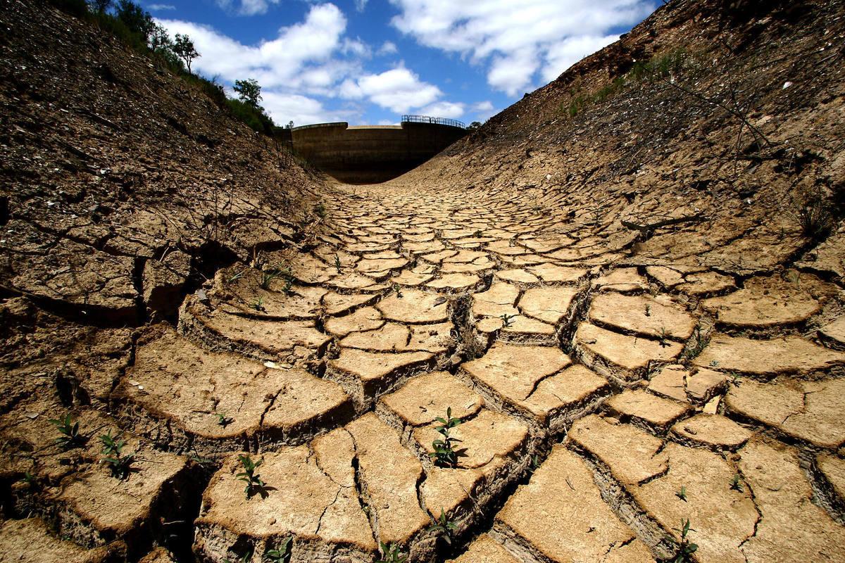 Представлена первая карта деградации земель в Туркестанской области