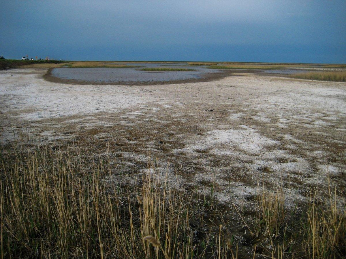 В Атырауской области намерены ликвидировать 100-летний солончак