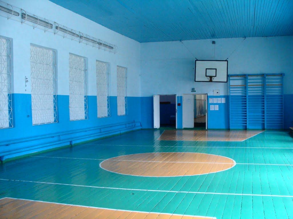 Школы самостоятельно могут сдавать в аренду спортзалы