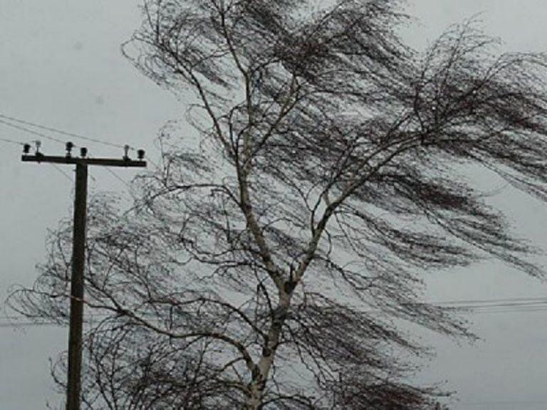 Сильный ветер сорвал кровли со 160 зданий в трех областях Казахстана