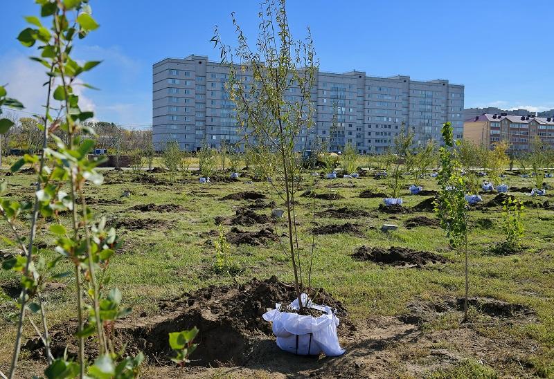 Павлодардағы ең ірі саябақты қалпына келтіру жұмыстары басталды