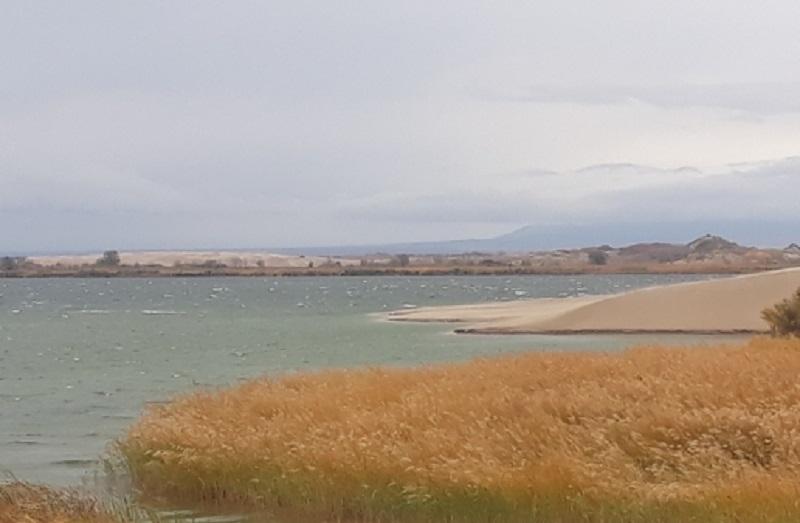 Токаев призвал международное сообщество помочь Казахстану восстановить баланс рек и озер