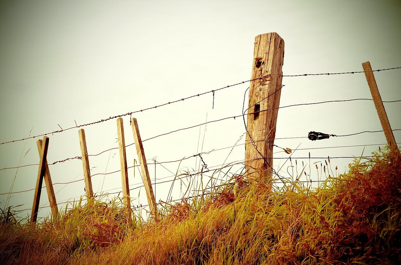 В Коптогае работы по установке пограничных столбов на границе с Россией временно приостановлены