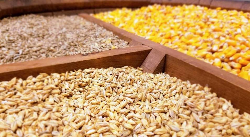МСХ обещает дать больше времени на прием заявок по отгрузке зерна на май