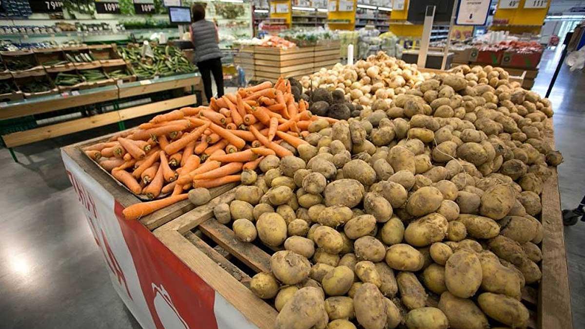 Павлодарскую область обещают обеспечить картофелем и морковью до мая следующего года