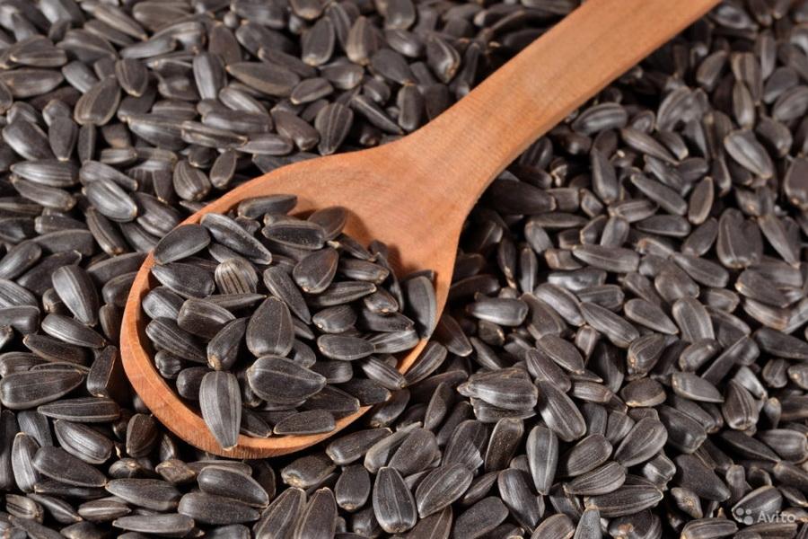 В Казахстане планируется введение квот на вывоз семян подсолнечника