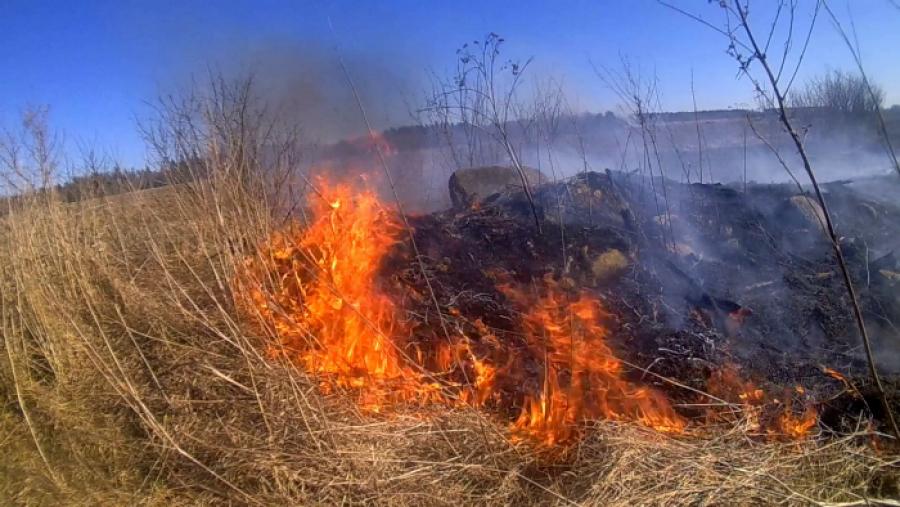 200 гектар егіс алқабында 3 рет өрт болды