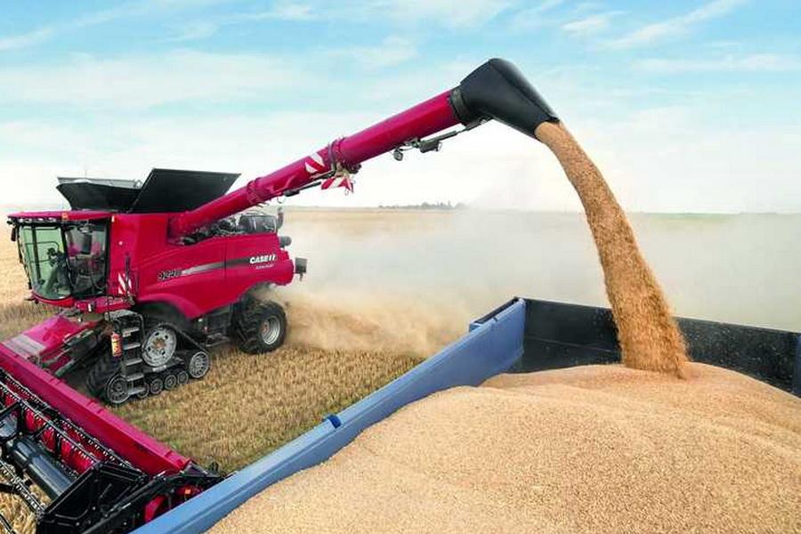 В Казахстане убрано 95% зерновых