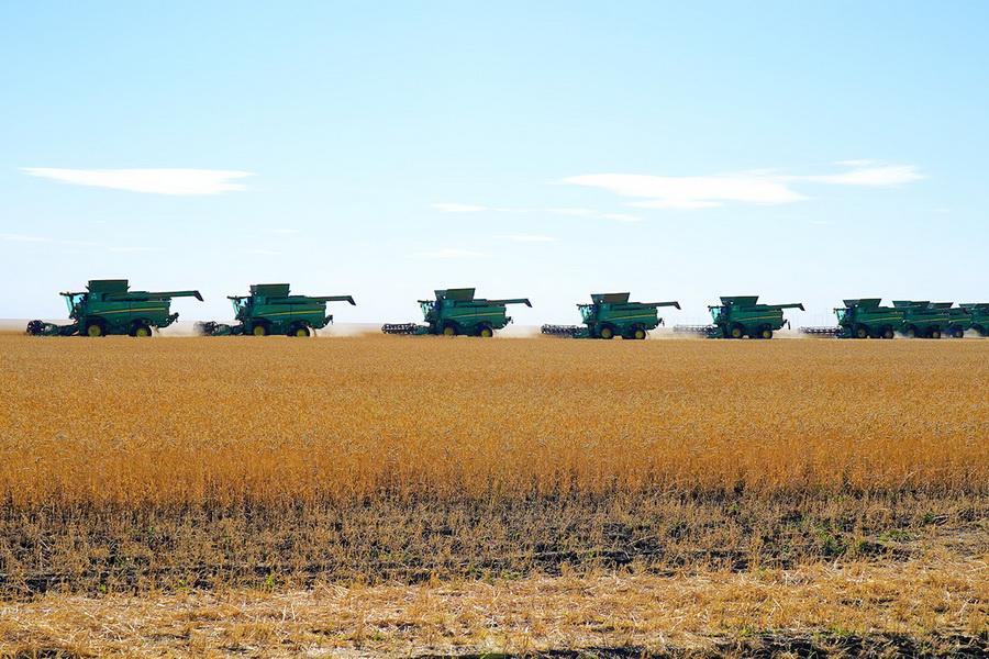 В Казахстане намолочено 10,3 млн тонн зерна