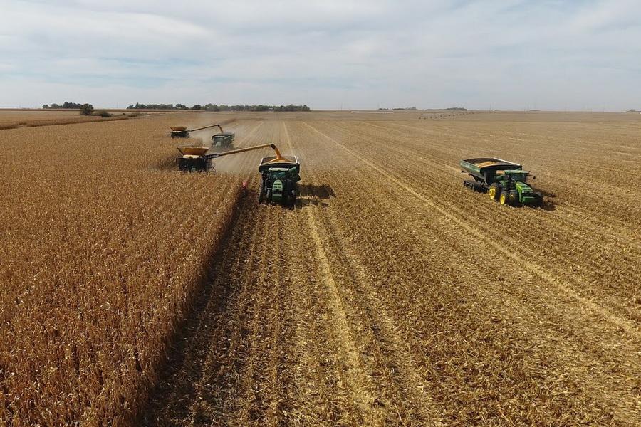 Уборка зерновых продолжается в двух регионах Казахстана