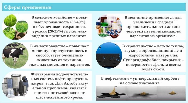 https://inbusiness.kz/ru/images/original/37/images/VFmetV4X.jpg