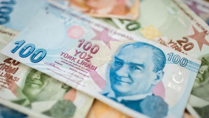 Турецкая лира упала до очередного исторического минимума