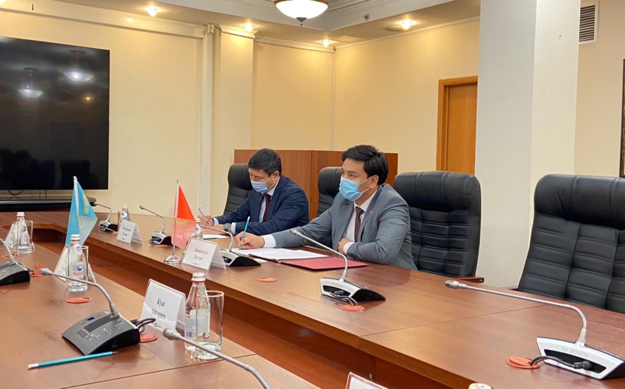 Министр экологии РК обсудил с послом Кыргызстана вопрос популяции джейранов