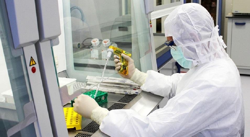 Число инфицированных коронавирусом в Казахстане превысило 80 тысяч человек