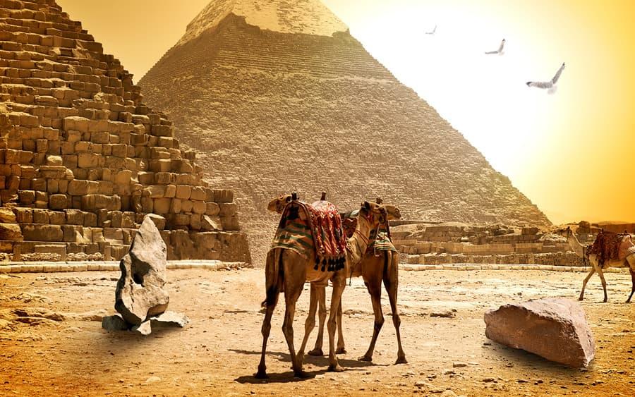 В Египте туристов предупредили об экстремальной жаре
