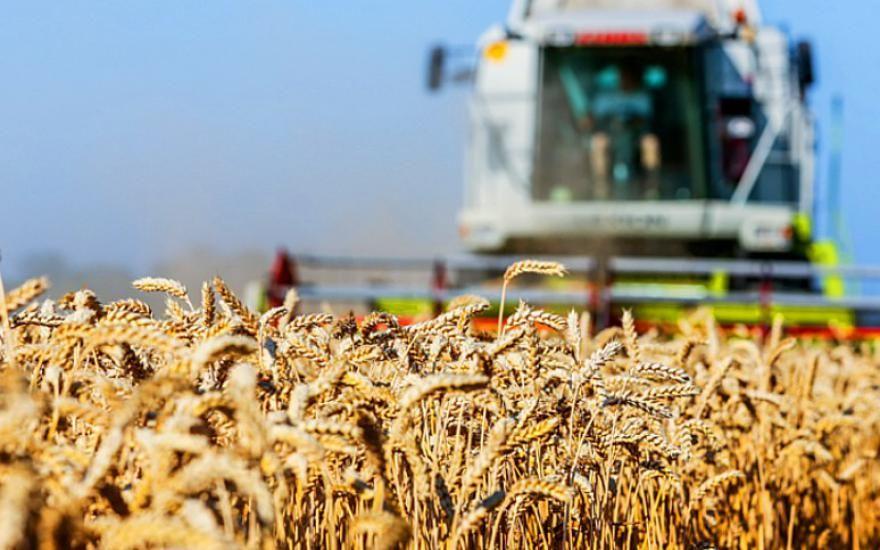 Предприниматель из Павлодара намерен конкурировать с российскими производителями мини-тракторов