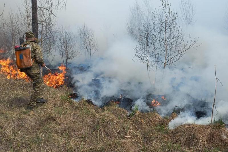 Пожар в поселке Лесхоз в Риддере удалось остановить